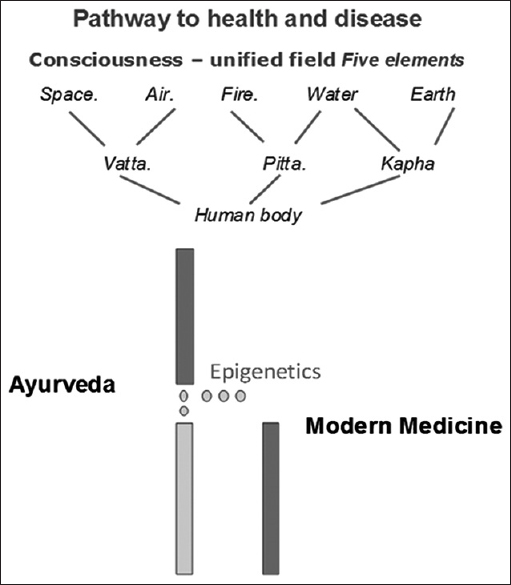 Figure 2: Pathway to health and disease