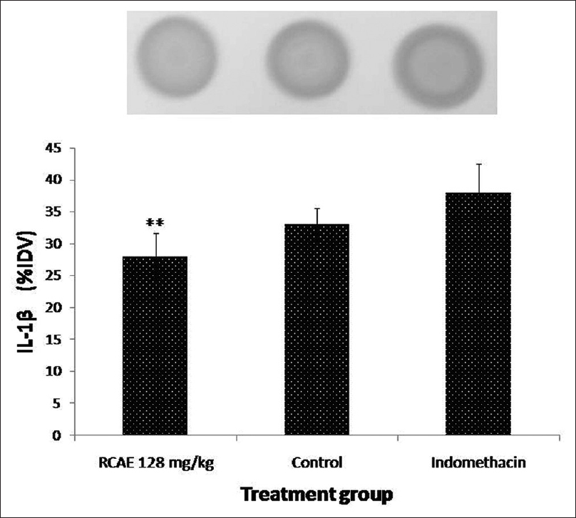 Figure 4: Effect of <i>Rosa centifolia</i> alcoholic extract on serum interleukin-1<sup>2</sup> in complete Freund's adjuvant induces arthritis. RCAE: <i>Rosa centifolia</i> alcoholic extract. All values are mean ± standard error